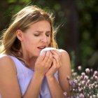 Allergie: Agaricus blazei ti libera